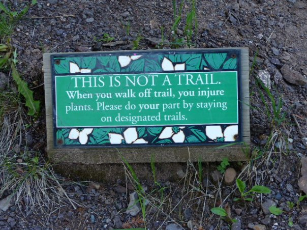 THIS IS NOT A TRAIL sign