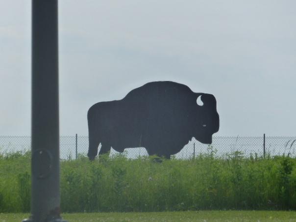 Tatanka at Missouri wayside rest